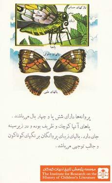 پروانگان (۴)