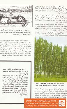 بیائید درخت انتخاب کنیم (۱۰)