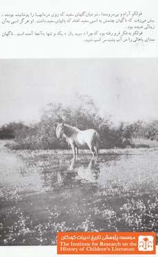سپید یال(۸)