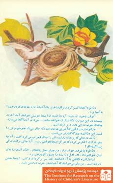 آشیانه پرندگان(۳)