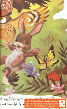 سنجاب کوچک۱۲