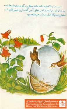 آشیانه پرندگان۵