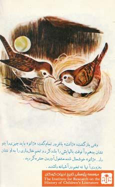 آشیانه پرندگان۱۰