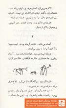 آدم و روباه(۱۰)