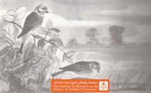 مهاجرت پرندگان (۵)